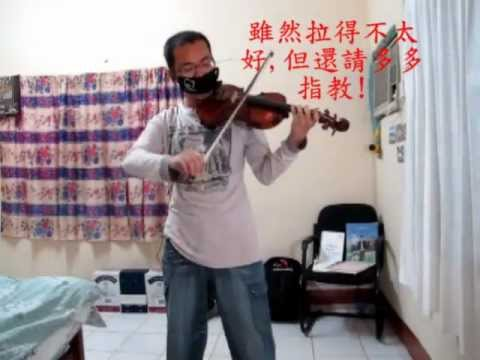 東方 「Bad Apple!!」(violin cover)