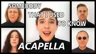 SOMEBODY THAT I USED TO KNOW - Gotye/Pentatonix cover - ACAPELLA