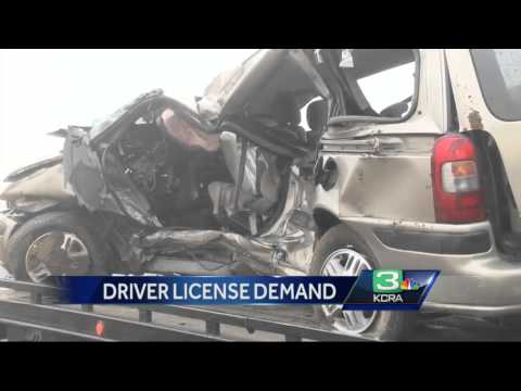 More undocumented immigrants line up for driver's licenses