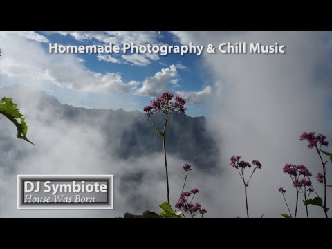 Electronic Music 24/7 Live | Deep & Tropical House | Liquid Drum & Bass | Nature Photography