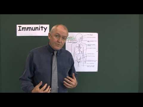 Immunity 3, Innate, Non-Specific Immunity