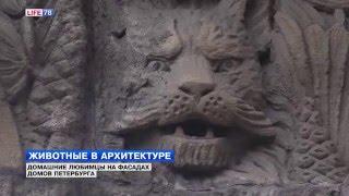 Животные в архитектуре Петербурга