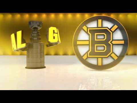 Boston Bruins 2019 Playoff Goal Horn