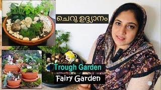 ചെറു ഉദ്ദ്യാനം | Trough garden | Fairy Garden