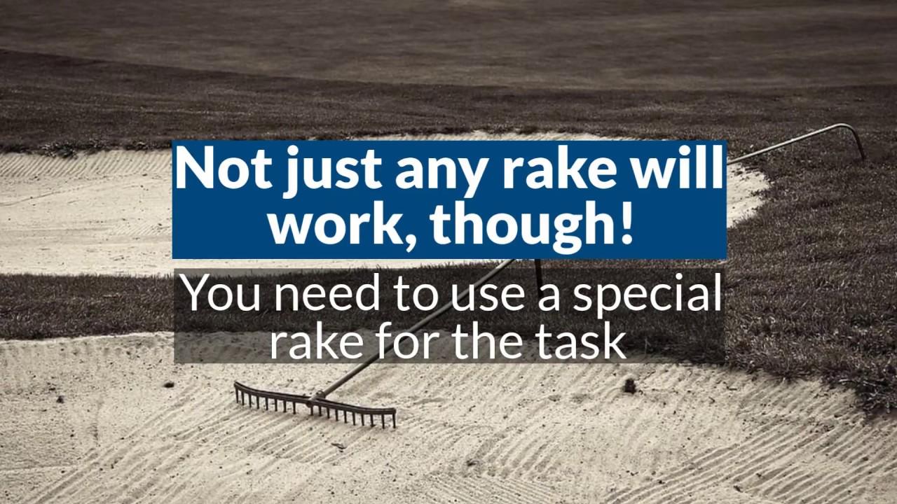 Do Carpet Rakes Remove Pet Hair Yes Get A Pet Hair Carpet Rake