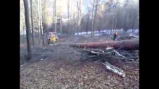 Lesny kolesovy traktor Belarus
