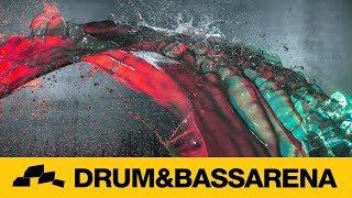 Black Sun Empire I Saw You Abis Signal Remix