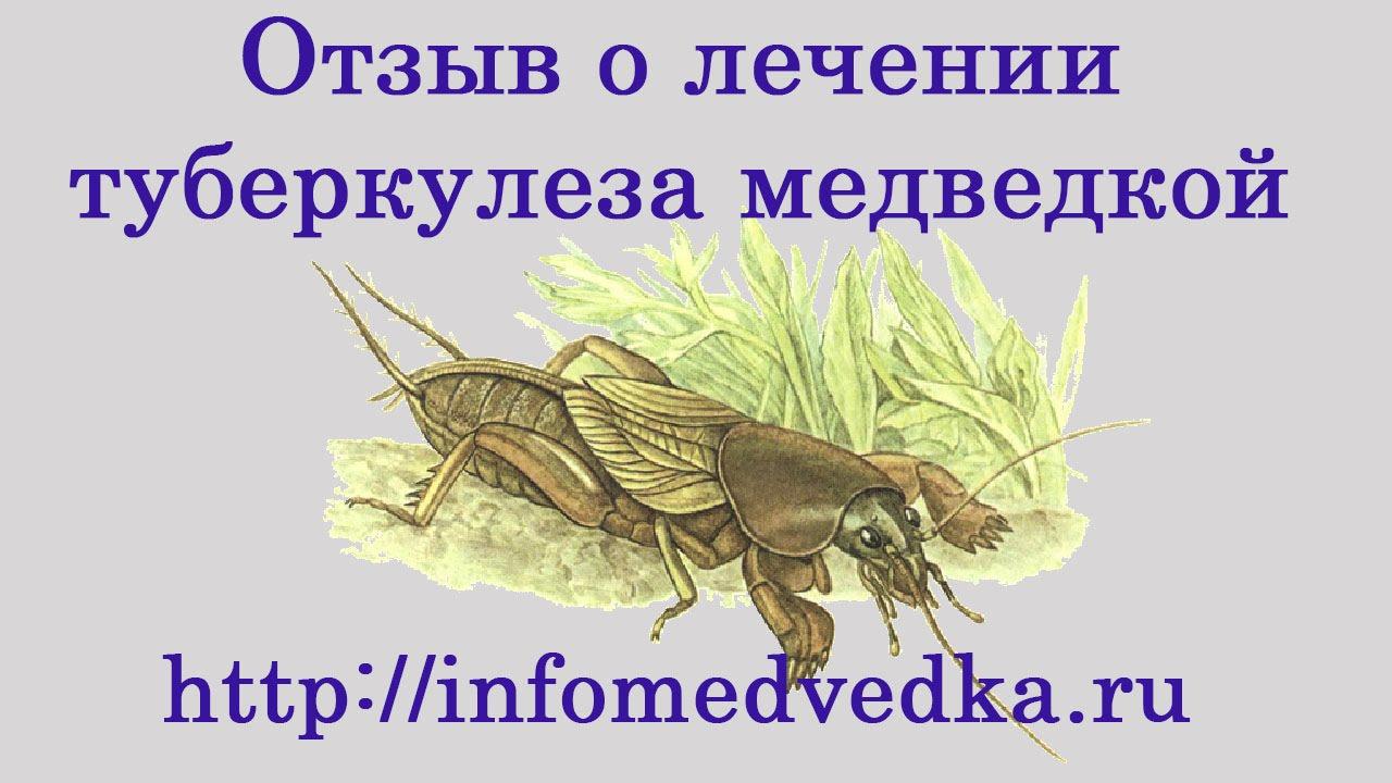 БЕРДЯНСК ЧАЙ ДЛЯ ДВОРНИКОВ ЗИМА 2017 - YouTube