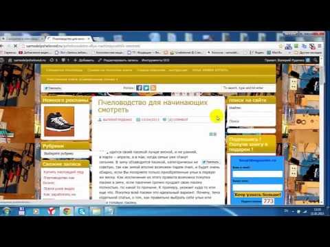 Появляющаяся реклама во всех браузерах можно ли заказать политическую рекламу у рекламных агентств