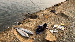 Los Vaqueros Fishing By The  Rock Wall |NIce Lassen Fish
