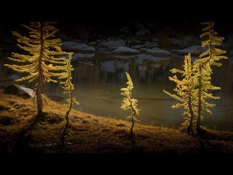 LANDSCAPE and LIGHT III | Recognizing great photographic light