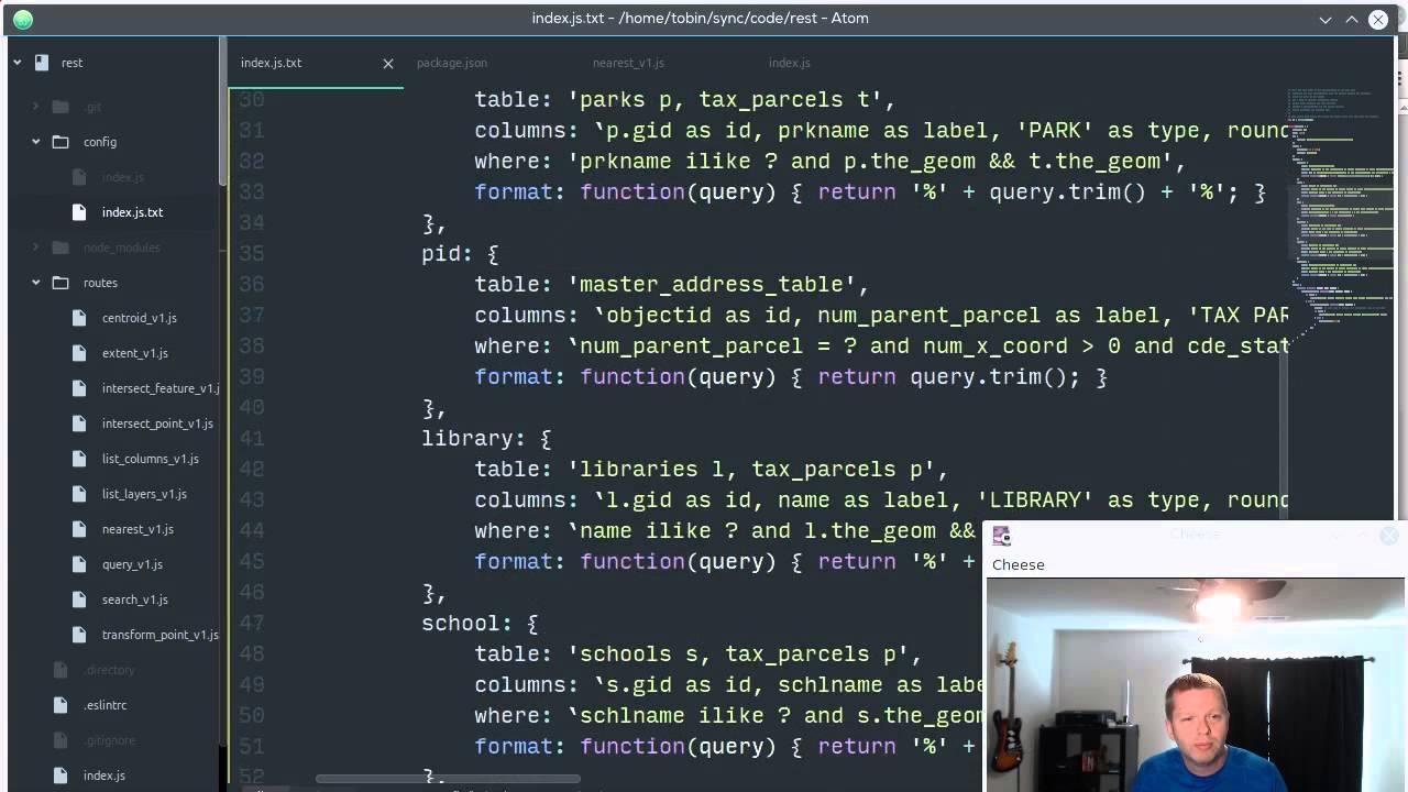 Dirt Simple PostGIS HTTP API v2 (Node)
