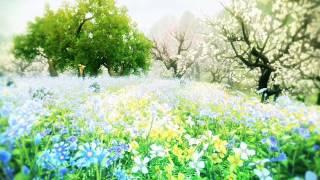 『PRIDE OF SOUL -舞翔伝- 』 特徴紹介