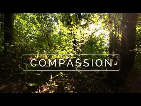 Compassion - The time for balance is now - Soil Balance Microbes