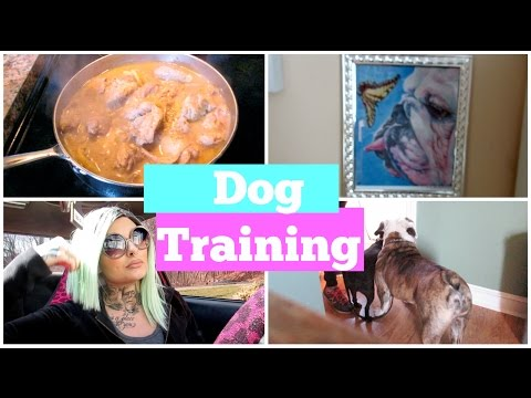 3/22/16 - Dog Training! | MariahMcLeanVlogs