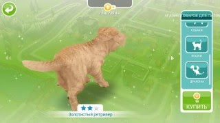 Lp. The Sims Freeplay #11 Самое милое видео=3