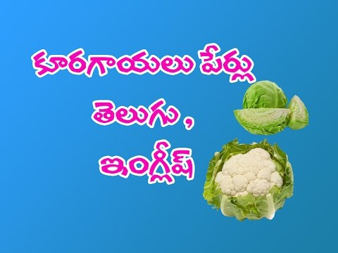 Vegetables Names In Telugu and English. - YouTube