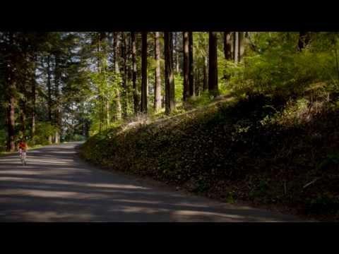 Mount Tabor - Portland, OR