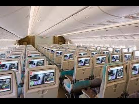 Fall in Love with Emirates Airline Journey! DXB to COK