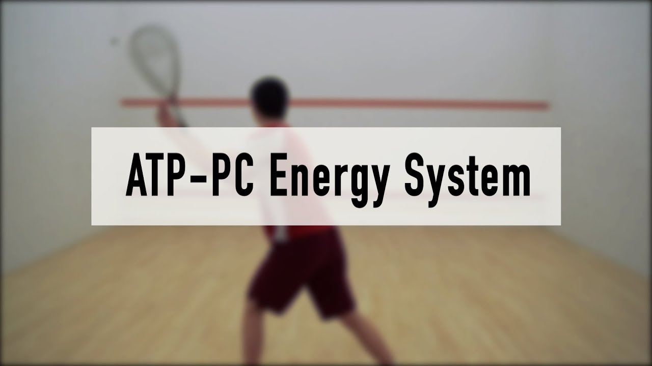 Atp Pc Energy System Youtube