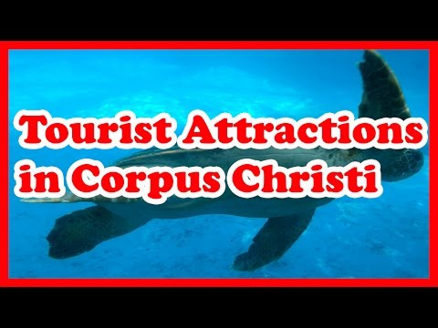 5 Top Tourist Attractions in Corpus Christi, Texas | US Travel Guide