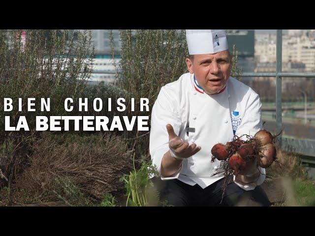BIEN CHOISIR une BETTERAVE by Éric Briffard