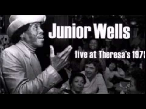 Junior Wells & Phil Guy~''Snatch It Back And Hold It''&''Scratch My Back'' Live 1975