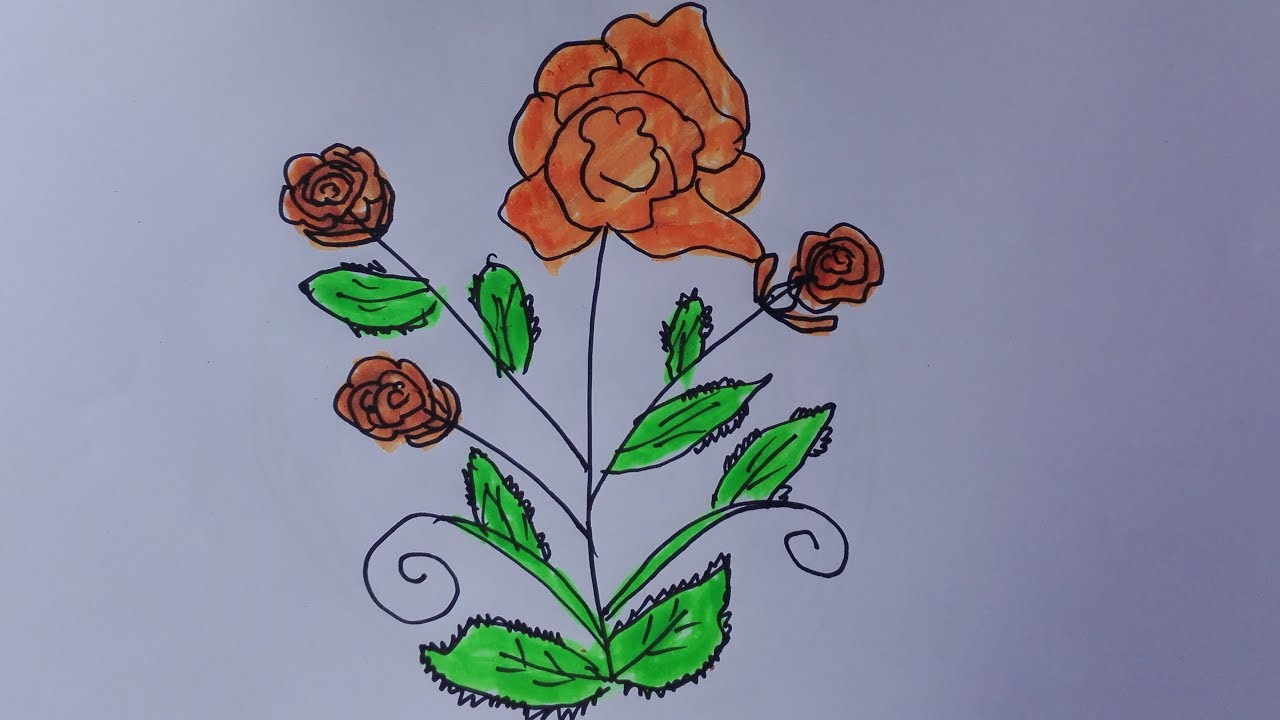 How to draw a rose tree draw a rose bush easy draw a rose for How to draw a rose bush step by step
