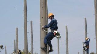 新入社員が電柱の昇り降りに挑戦 関電で研修中