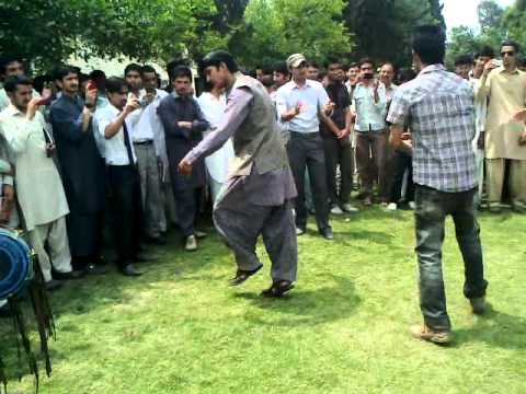 Hazara university haripur campus celibration on teachr union.mp4