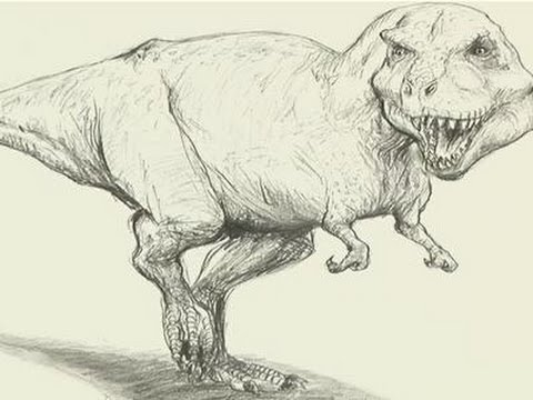 how to draw a t rex youtube