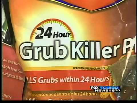 How can you get rid of grubs on grass?