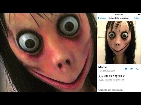 Momo - unheimlicher WhatsApp Account  | MythenAkte