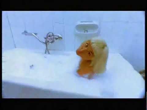 Yonca Evcimik - I'm Hot For You