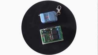 Kit Émetteur Récepteur Radio 9V 12V 24V 2 Canaux - Mode de Contrôle Triggering