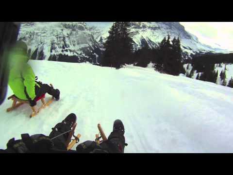 Schlitteln First Grindelwald