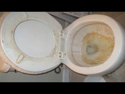 How to clean the toilet como limpiar el ba o youtube - Como limpiar bano ...