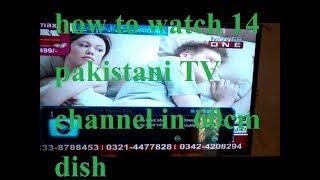Free all pakistani tv channels