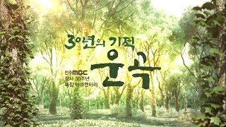 [MBC 특집 자연다큐] 30년의 기적!  운곡 [내레이션 배우 최불암]