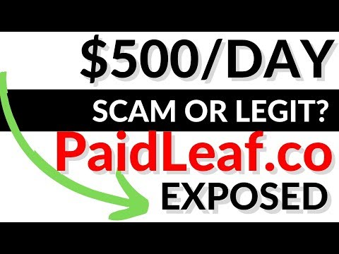 PaidLeaf.co Review BIG SCAM? EXPOSED - Payment Proof?