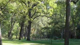 Watch Watson Family Shady Grove video