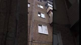 Кошка застряла в окне