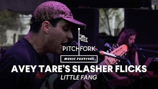 Avey Tare's Slasher Flicks perform