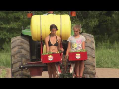 Maryland Farm Couple Sells Produce Locally - America's Heartland