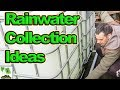 Rainwater Harvesting And Containment For Allotment Gardens