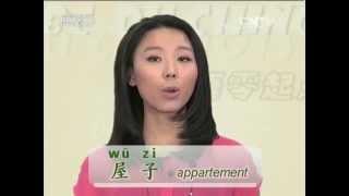 Le chinois au pluriel
