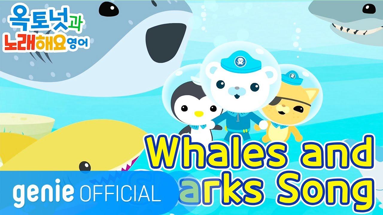 바다 탐험대 옥토넛 The Octonauts - Whales and Sharks song Official M/V