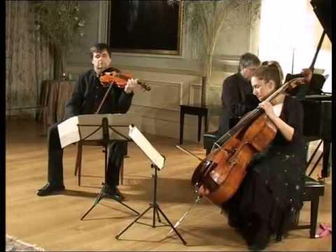 Mendelssohn Piano Trio No.1 in D minor Op.49 - Part 1/3