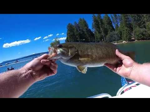 Fishing for small mouth lake almanor youtube for Lake almanor fishing report