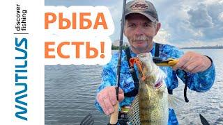 Константин Кузьмин Ловля хищника на Воронежском водохранилище